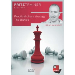 Practical Chess Strategy:...